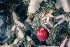Juldekor på snö täckte filialer royaltyfri bild