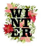 Juldesign i vektor Vinterjulstjärnan blommar Retro bakgrund vektor illustrationer