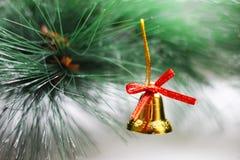 Juldesign på den naturliga bakgrunden Royaltyfria Foton