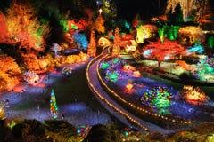 julen arbeta i trädgården lighting arkivbild