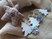 julen dekorerar nya home idéer för garnering till Träd, ananors och en stjärna Royaltyfria Foton