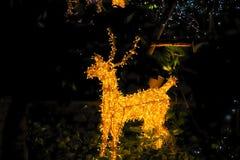 julen dekorerar nya home idéer för garnering till Visat på bokeh tänder bakgrund Royaltyfria Bilder