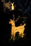 julen dekorerar nya home idéer för garnering till Visat på bokeh tänder bakgrund Royaltyfri Bild