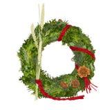 julen isolerade den vita kranen royaltyfria bilder