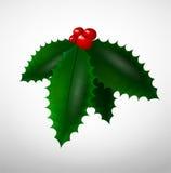 julen isolerade mistletoen Arkivfoton