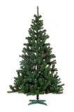 julen isolerade treen Arkivfoto