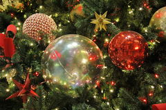 Julen klumpa ihop sig på treen Fotografering för Bildbyråer