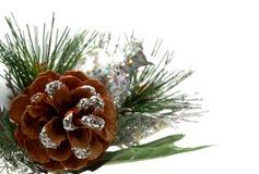 julen smyckar blankt royaltyfri bild
