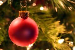 julen smyckar den röda treen Arkivfoto