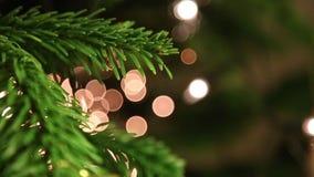 julen stänger upp treen arkivfilmer