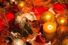 Julförberedelse Royaltyfria Bilder