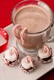 Julfestmarshmallower med godisrottingar och varm choklad Royaltyfri Foto