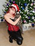 Julflicka med katten arkivbild