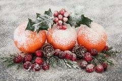 Julfruktskärm royaltyfria bilder
