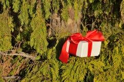 Julgåva med det röda silkeslena bandet Fotografering för Bildbyråer