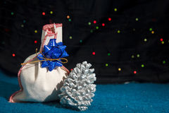 Julgåva och en kotte Royaltyfri Fotografi