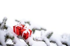 Julgåvaaskar och snögranträd royaltyfri bild