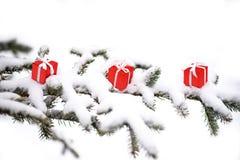 Julgåvaaskar och snögranträd arkivfoton