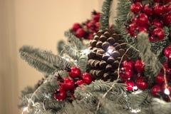 Julgarnering av kottar, bär och girlander Arkivbilder