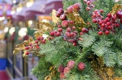 Julgarnering av röda bär och det gröna gran-trädet royaltyfri fotografi