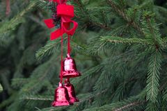 Julgarnering med röda klockor på fluffiga prydliga filialer B Royaltyfria Foton