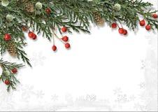 Julgräns med järnek som isoleras på vit arkivbild