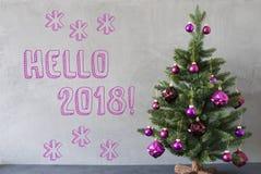 Julgran cementvägg, text Hello 2018 Royaltyfri Fotografi
