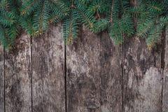 Julgran förgrena sig på träbakgrund Sammansättning för Xmas och för lyckligt nytt år Lekmanna- lägenhet, bästa sikt fotografering för bildbyråer