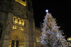 Julgran framme av den Bordeaux domkyrkan, Frankrike arkivbild