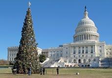 Julgran framme av Förenta staternaKapitoliumbyggnad i Washington DC, USA Fotografering för Bildbyråer