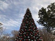 Julgran i Dallas Texas fotografering för bildbyråer