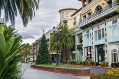 Julgran i den shoppingområdesSantana raden, San Jose, Kalifornien Royaltyfria Foton
