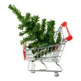 Julgran i en shoppingvagn Royaltyfria Foton
