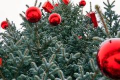 Julgran i gatan som dekoreras med röda bollar och giftboxes royaltyfri bild
