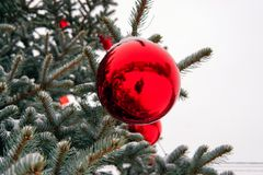 Julgran i gatan som dekoreras med röda bollar och giftboxes royaltyfria bilder