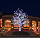 Julgran i i stadens centrum Brampton, Ontario Arkivbilder