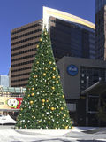 Julgran i i stadens centrum Phoenix, AZ Arkivfoton