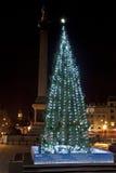 Julgran i London den Trafalgar fyrkanten Arkivbilder