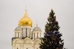 Julgran i MoskvaKreml Ärkeängeldomkyrka Arkivbild