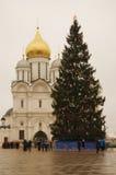 Julgran i MoskvaKreml Ärkeängeldomkyrka Royaltyfri Fotografi