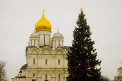 Julgran i MoskvaKreml Ärkeängeldomkyrka Royaltyfria Foton