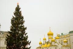 Julgran i MoskvaKreml Fotografering för Bildbyråer