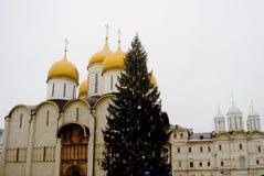 Julgran i MoskvaKreml Royaltyfri Foto