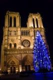 Julgran i Paris som är främst av denParis domkyrkan i vintern på natten arkivbild