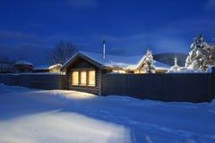 Julgran i snöig vinter Arkivbild