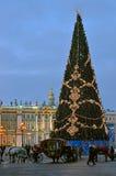 Julgran i St Petersburg, Ryssland Arkivfoto
