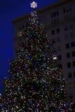 Julgran i staden royaltyfri foto