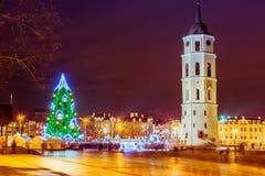 Julgran i Vilnius Litauen 2015 Arkivbild
