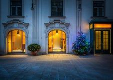 Julgran i Wien Arkivbild