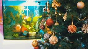 Julgran med bollar, garneringar och en girland framme av akvariet inom rummet arkivfilmer